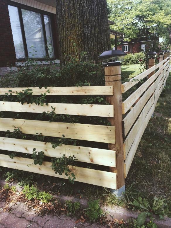 clôture avant